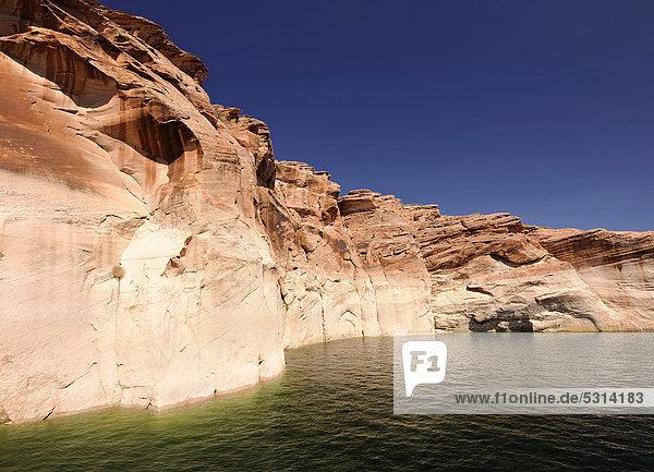 Sogenannte Badewasserlinie des Antelope Canyon vom Lake Powell aus gesehen  zeigt Wasserhöchststand an  Page  Navajo Nation Reservation  Arizona  Vereinigte Staaten von Amerika  USA
