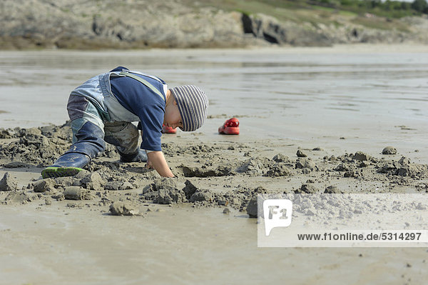 Young angler digging for sandworms (Arenicola marina) on the beach  Atlantic Ocean  Finistere  Brittany  France  Europe  PublicGround