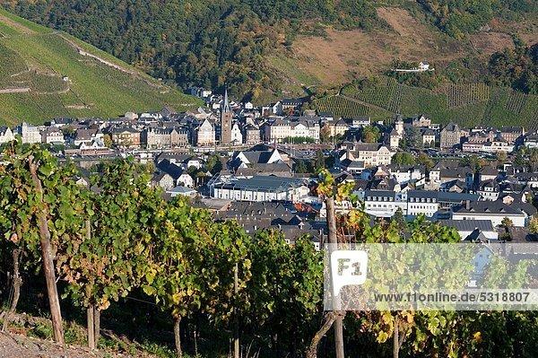 Tal  Fluss  Dorf  Ansicht  Nachmittag  Bernkastel-Kues  Deutschland  Weinberg