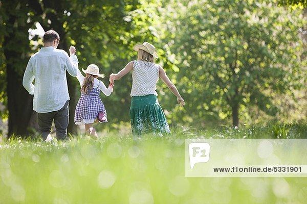 Familie spaziert Hand in Hand im Park