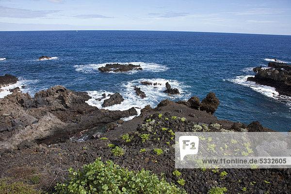 Felsküste mit spärlicher Vegetation  Playa Cancajos  hinten Santa Cruz  La Palma  Kanarische Inseln  Spanien  Europa  Atlantischer Ozean