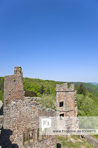 Ruine Madenburg  Eschbach  Deutsche oder Südliche Weinstraße  Pfalz  Rheinland-Pfalz  Deutschland  Europa