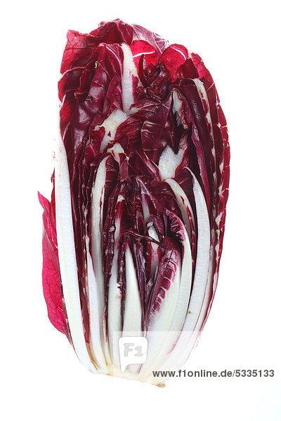 Länglicher Radicchio  Rosso di Treviso Tardivo (Cichorium intybus var. foliosum)  Längsschnitt