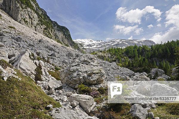 Berglandschaft beim Krn-See  Triglav Nationalpark  Slowenien  Europa