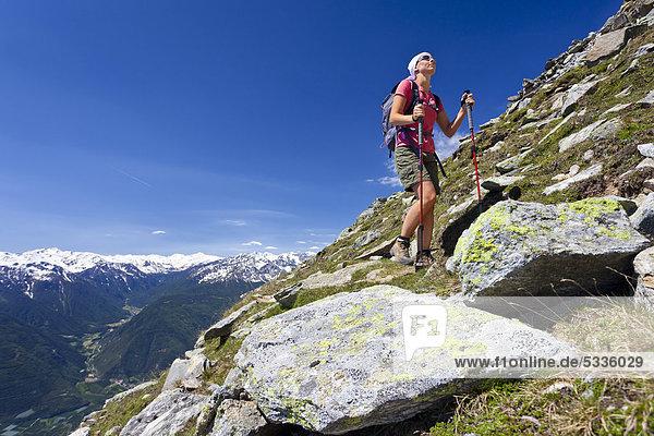 Bergsteiger beim Aufstieg zur Vermoispitze oberhalb von Latsch  Vinschgau  hinten das Ortlergebiet  Südtirol  Italien  Europa