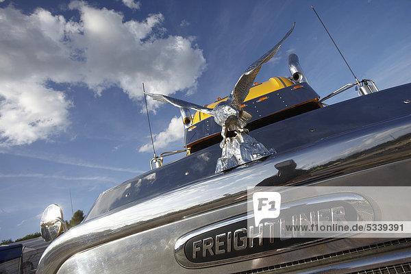 Freightliner US-Truck  Nürburgring  Rheinland-Pfalz  Deutschland  Europa