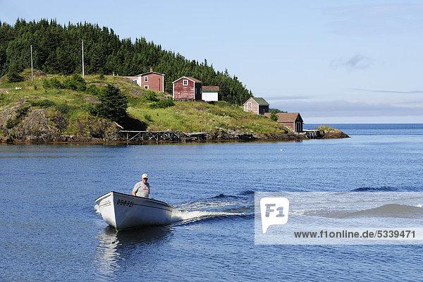 Fischer kommt mit seinem Boot vom Fischen  bei Twillingate  Newfoundland  Neufundland  Kanada