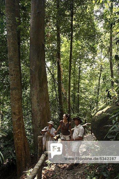Dschungel Trekking in Pangkor Laut Resort in Malaysia