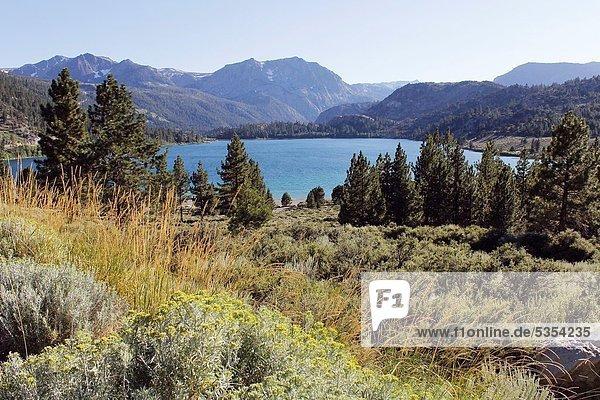 Vereinigte Staaten von Amerika  USA  Sierra Nevada  Kalifornien
