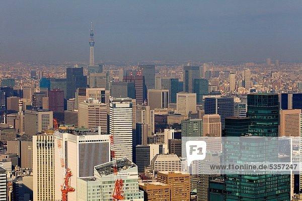 Skyline  Skylines  Baum  Himmel  Tokyo  Hauptstadt  Hintergrund  Asien  Japan  links