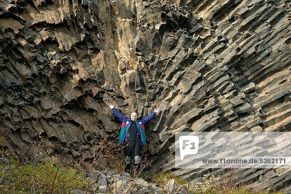 Man standing in front of Basalt Columns  Jokulsargljufur canyon  Northern Iceland