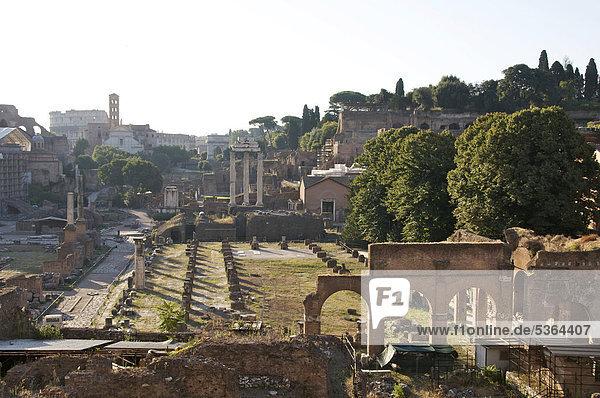 Forum Romanum  Rom  Italien  Europa