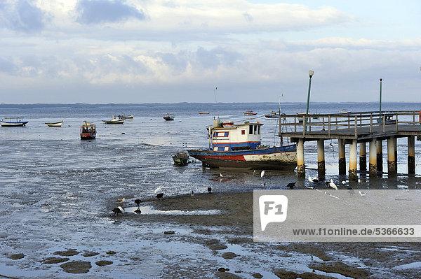 Fischerhafen  Pedra de Guaratiba  Bucht von Sepitiba  Rio de Janeiro  Brasilien  Südamerika