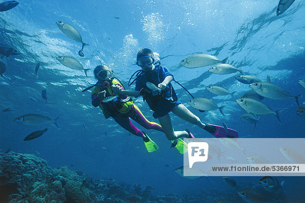 Kindertauchen  Taucher hält Kind an der Hand und füttert Fische  Ari-Atoll  Malediven  Indischer Ozean  Asien