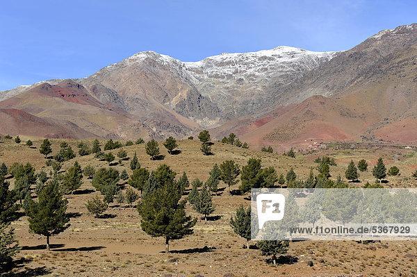 Gebirgslandschaft  Tizi-n-Tichka-Pass  Hoher Atlas  Marokko  Maghreb  Nordafrika  Afrika