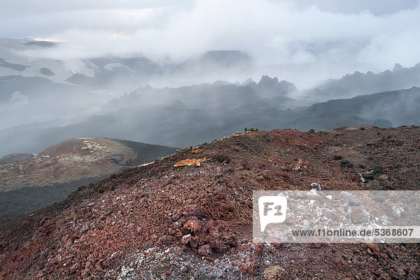 Steaming lava field formed during the eruption of a fissure vent in the Fimmvoer_uh·ls region in 2010  Fimmvoer_uh·ls hiking route  _Ûrsmoerk  Iceland  Europe