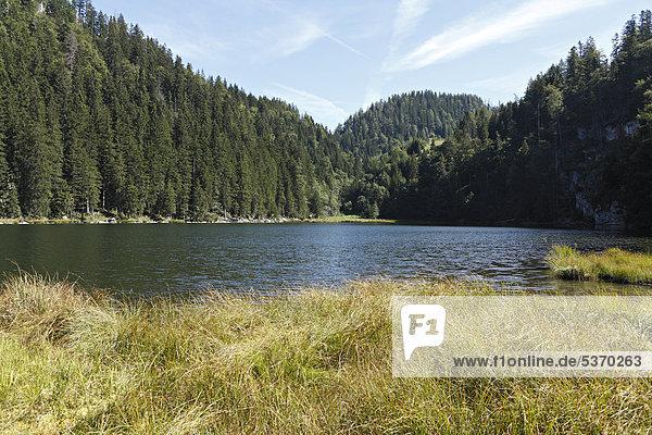 Taubensee  Chiemgau  Oberbayern  Deutschland  Europa