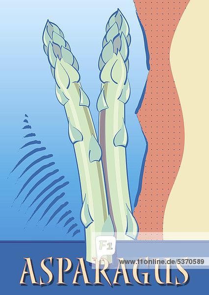 Spargel  Schriftzug Asparagus  Illustration