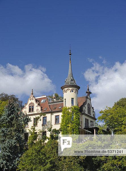 Schloss Gattersburg in Grimma  Sachsen  Deutschland  Europa