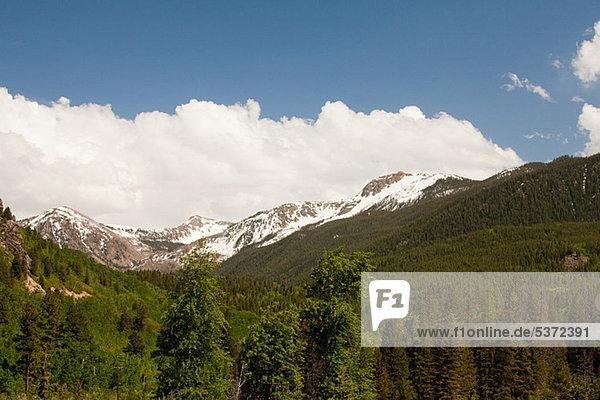 White River National Forest  Colorado  USA