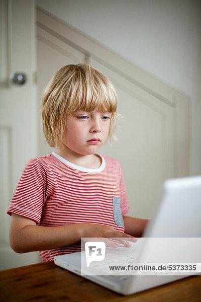 benutzen Schreibtisch Notebook Junge - Person