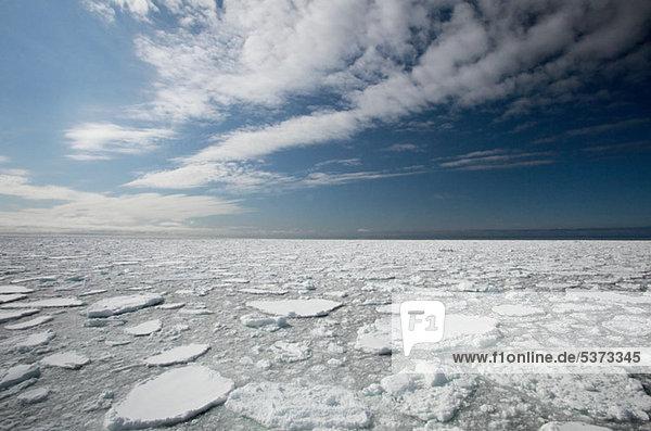 Eisscholle  Spitzbergen  Norwegen  Vietnam