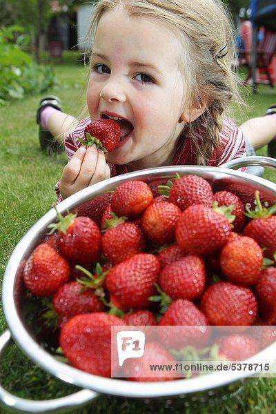 Ein Mädchen mit Erdbeeren in einem Sieb