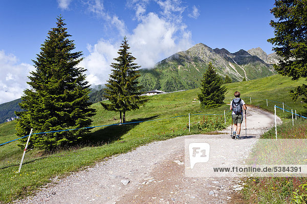 Hiker on his way to the Ultner Hochwart  Ulten Valley  near the Clozalm alp  Mandelspitze mountain at the back  Ulten in spring  province of Bolzano-Bozen  Italy  Europe
