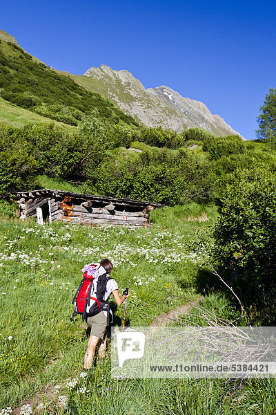 Hiker during the ascent to Mt Hochfeiler from Pfitschertal valley  South Tyrol  Italy  Europe