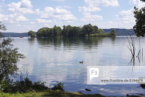 Roseninsel  Starnberger See  Feldafing  Fünfseenland  Oberbayern  Bayern  Deutschland  Europa  ÖffentlicherGrund