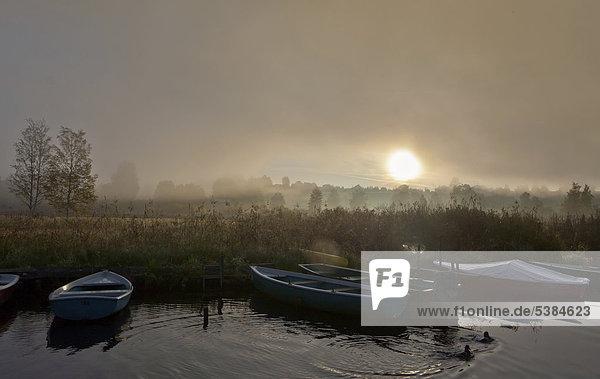Boote im Nebel am Staffelsee mit der Insel Wörth bei Seehausen  Murnau  Oberbayern  Bayern  Deutschland  Europa  ÖffentlicherGrund