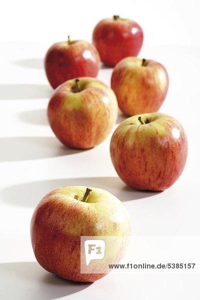 Äpfel der Sorte Gala