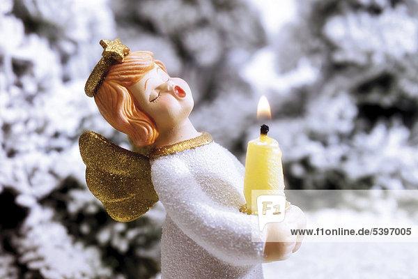 halten Schnee Wald Kerze Engel