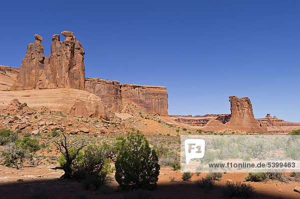 Three Gossips  Arches Nationalpark  Utah  USA
