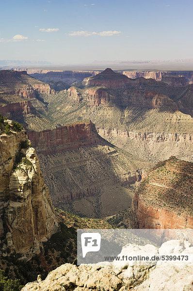 North Rim  Grand Canyon Nationalpark  Arizona  USA