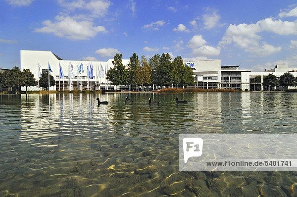 Neue Messe  Eingang West  See mit Blässhuhn (Fulica atra)  München  Bayern  Deutschland  Europa