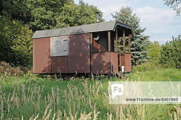 Simple wooden cabin  trailer  woods  Iserlohn  Sauerland region  North Rhine-Westphalia  Germany  Europe