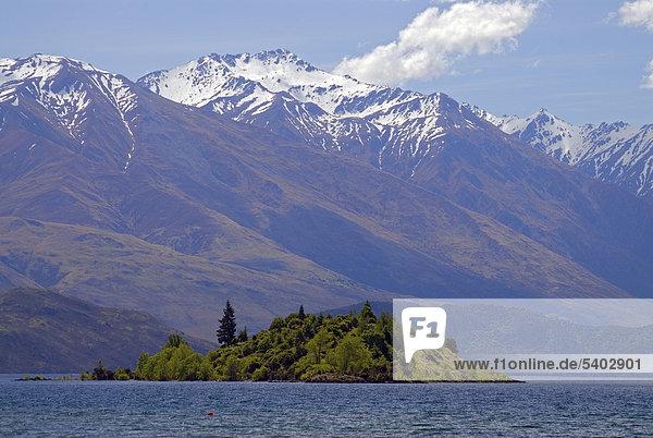 Eine grüne Insel im Lake Wanaka  hinten die schneebedeckten Gipfel der Südinsel  Neuseeland