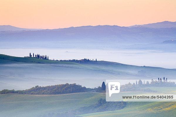 Landschaftlich schön landschaftlich reizvoll Bauernhaus Getreide Wohnhaus Silhouette gelb grün Landwirtschaft Pflanze Nebel Feld anbauen Toskana Allee Italien Morgenstimmung Nebelfelder