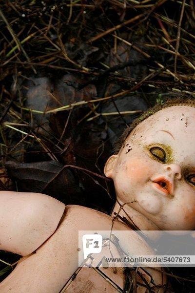 hoch  oben  waschen  Fluss  Baby  Bank  Kreditinstitut  Banken  Puppe
