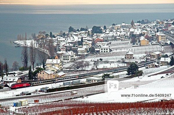 Lavaux vineyards in winter  Geneva Lake  Swiss Riviera  canton Vaud  Switzerland