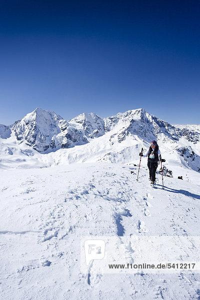Skitourengeher beim Aufstieg zur hinteren Schöntaufspitze  Sulden im Winter  hinten Königsspitze  Ortler und Zebru  Südtirol  Italien  Europa