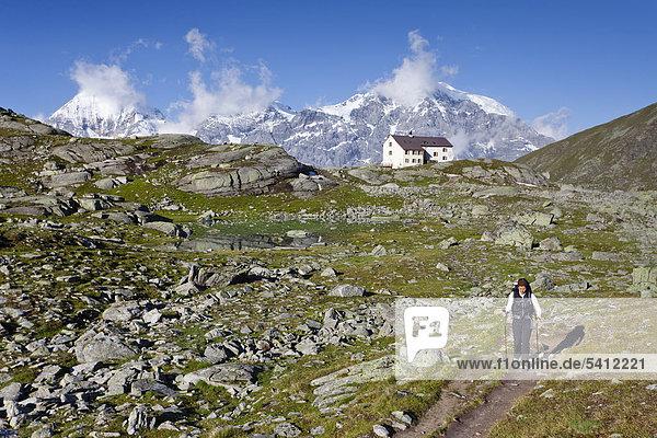 Wanderer vor der Düsseldorfhütte mit Blick auf Ortler  Zebru und König oberhalb von Sulden  Suldental  Südtirol  Italien  Europa