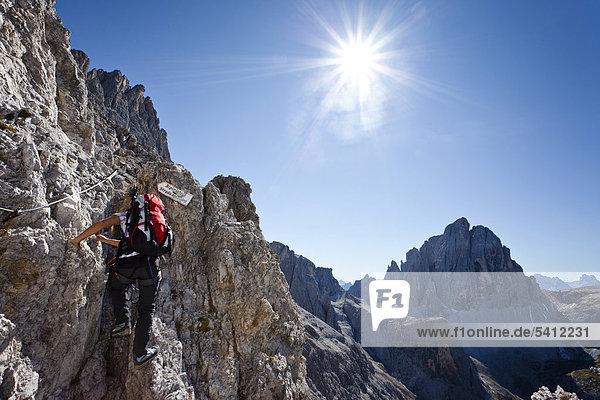 Kletterer im Alpinisteig  hier auf der Elferscharte  hinten der Zwölferkofel  Sexten  Hochpustertal  Dolomiten  Südtirol  Italien  Europa