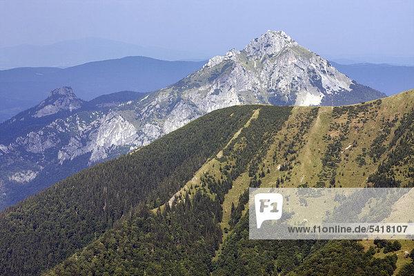 Der Berg Velky Rozsutec  Nationalpark Kleine Fatra  Slowakei  Europa