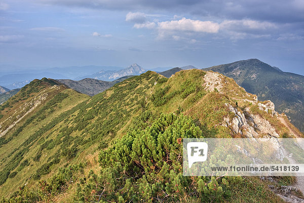 Pripor Naturschutzgebiet  Nationalpark Kleine Fatra  Slowakei  Europa