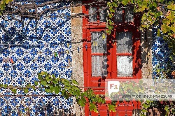 Fenster Porto Portugal Fenster,Porto,Portugal