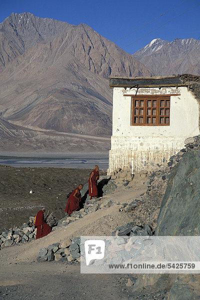Mönche  Kloster Deskit oder Diskit  Gompa  Hunder  Nubra-Tal  Ladakh  indischer Himalaya  Jammu und Kaschmir  Nordindien  Indien  Asien