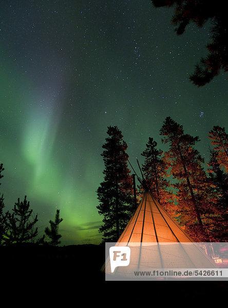 Hell erleuchtetes Tipi  Indianerzelt  Nordlicht  nördliches Polarlicht  Aurora Borealis  grün  in der Nähe von Whitehorse  Yukon Territorium  Kanada