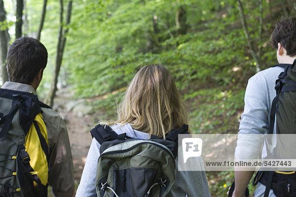 Wanderer auf dem Weg  Rückansicht